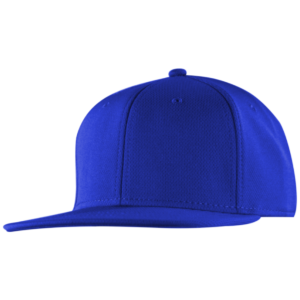 BIRDS EYE MESH SNAP BACK
